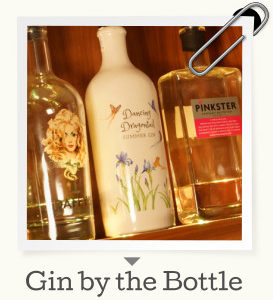 Gin by the Bottle