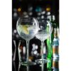 nbottanist gin glass set